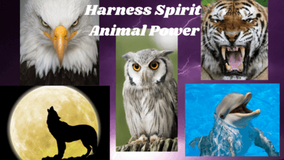 harness spirit animal power eagle wolf tiger dolphin owl