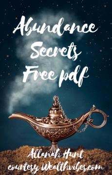 Abundance Secrets free pdf